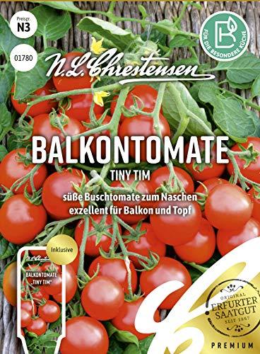 Balkontomate Tiny Tim, süße Buschtomate zum Naschen, Samen