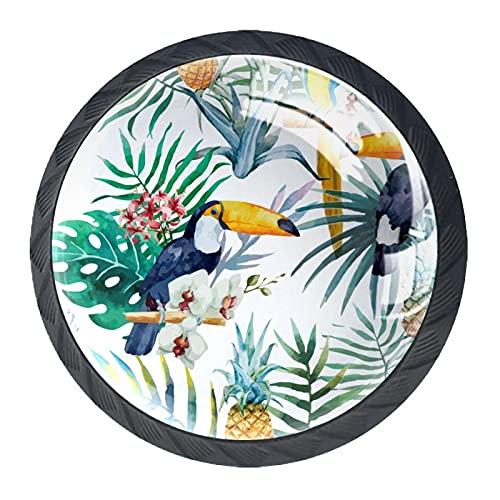 Acuarela de pájaros tropicales Plantas de piña, paquete de 4 pomos modernos redondos para oficina, hogar, cocina, baño