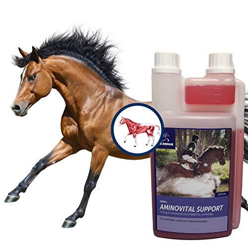 Amino Liquid I Aminosäuren Vitamine Pferd I Vitamin komplex I Lysin Plus Zink I Muskelaufbau für Pferde I Energy Booster Pferd I Pferdefutter Muskulatur I Muskel Plus Pferd & Sportpferde 1 L