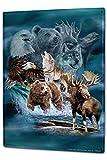 LEotiE SINCE 2004 Blechschild Welt Reise Tier Alaska Wand