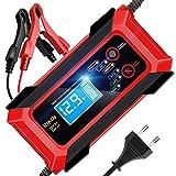 RIKIN Cargador de Baterías Coche 12V/24V 8A Cargadores de Bateria Automático Inteligente con Múltiples Protecciones para Coche Motocicletas ATVs RVs Barco