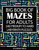 Big Book of Mazes for Adults: 180 Medium to Hard Labyrinth Puzzles