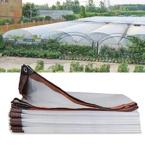 SHIJINHAO Impermeable Lonas Impermeables Exterior,jardinería Lona Transparente con Agujeros De Metal Anti-UV Multifuncional Polietileno Panel De Plástico, 23 Medidas. (Color : Claro, Size : 2X3M)