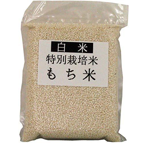 【天日干しもち米1.4kg×4袋】無農薬栽培した千葉・大多喜産のもち米。