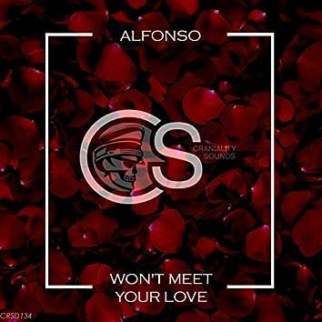Won't Meet Your Love (Single Love Mix)
