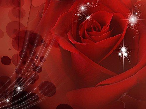 Delester Design 8-010-P8 Décoration Murale Motif Red Rose 254 x 368 cm