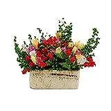 Cool Ring Mini Plant Model Mini Pflanzenmodell Fertige Blumen-Lehm-Handarbeit Kleiner...
