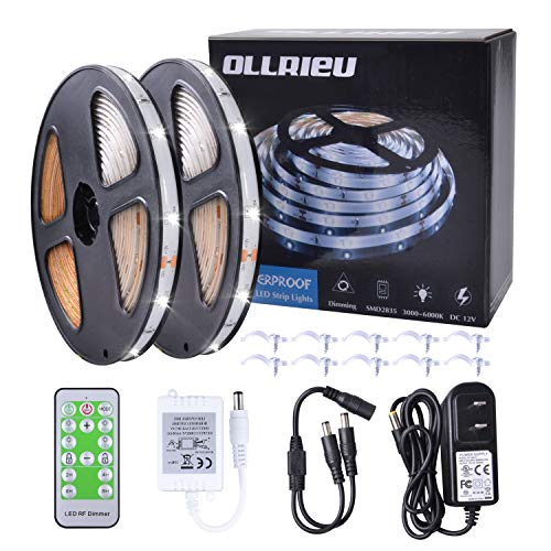 LED Strip Lights 32.8ft White Rope Lighting Outdoor Waterproof Dimmable 12V Power Plug in RF Remote Connectable Cuttable 300 Units 2835 SMD Flexible Indoor Tape Light for Bedroom Cabinet Kitchen