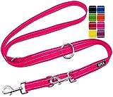DDOXX Guinzaglio per Cani Nylon Riflettente, Regolabile con 3 Misure, 2 m   Tanti Colori e Taglie   Guinzaglio Doppio Cane Gatto Cucciolo Taglia Piccola Media Grande Piccoli Medi Grandi   M, Rosa Rosa
