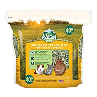 Petlife Oxbow Orchard Grass Hay for Small Pet, 1.13 kg 20
