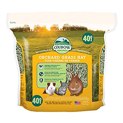 Petlife Oxbow Orchard Grass Hay for Small Pet, 1.13 kg 1