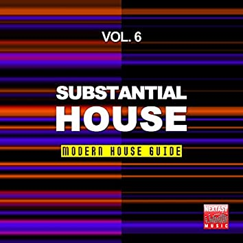 Substantial House, Vol. 6 (Modern House Guide)