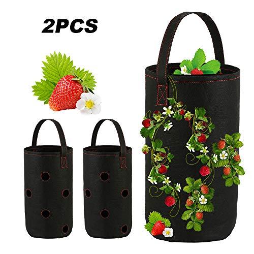 Anemoner - 2 bolsas para macetas de fresa, con 11 agujeros y...