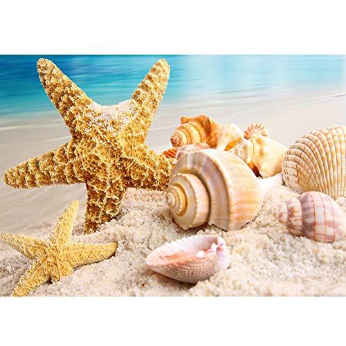 MXJSUA Pintura de Diamante DIY para Adultos Pintura de Taladro Cuadrado Completo con Kits de Diamantes Arte 5D para decoración de Pared Ocean Beach Seashell Starfish 40x50cm
