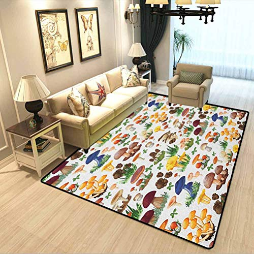 Mushroom Indoor Carpet Pattern with Types of Mushrooms Wild Species Organic Natural Food Garden Theme Children Education Learning Carpet Multicolor W3xL5 Feet