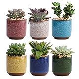 Tuozhan Macetero de cerámica con grieta de hielo, maceta de jardín, suculentas para decoración en el hogar, oficina, plantas pequeñas
