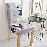 kailehi Stretch einfacher Stoff regulärer Eisbär,Stuhlhussen Set Baumwolle - Bi-elastische Stretch Stuhlüberzüge - Universal Stuhlbezug - Stuhlabdeckung waschbar