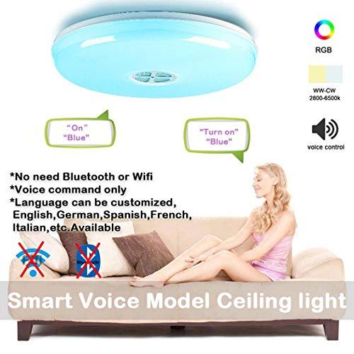 #Tubo de lámpara de techo Luz de techo LED para música de 24 vatios, lámpara de techo Alexa36cm Amazon Alexa WiFi para dormitorio con altavoz Bluetooth, 95V-265V, soporte inalámbrico de Alexa Echo y G