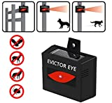 XZYP Solar Powered Ultrasonic Animal Repeller, Repel Unwanted Animal: Cats And Dogs, Squirrels,Raccoons,...