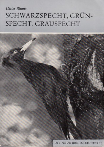 Schwarzspecht, Grünspecht, Grauspecht.