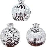 khevga Juego de 3 jarrones decorativos de porcelana, color plateado