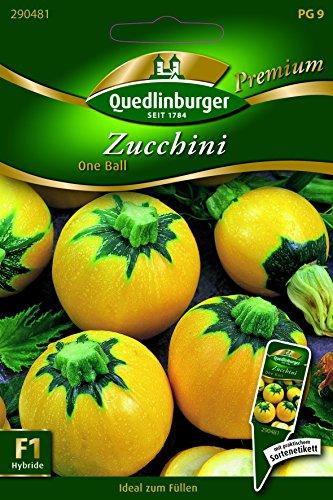 Zucchini One Ball - Cucurbita pepo L. QLB Premium Saatgut Zucchini
