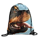 uykjuykj Bolsos De Gimnasio,Mochilas,Seal Pups Stylish Drawstring Backpack Gym Sackpack For Men Women School Travel Bag Rottweiler Portrait Lightweight Unique 17x14 IN