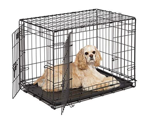 MidWest Homes for Pets Midwest iCrate Zusammenklappbare Hundebox aus Metall mit Zwei Türen, 76,20x48,26 x 53,34cm