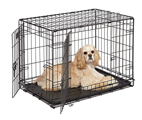 Dog Crate | MidWest ICrate 30 Inch Double Door Folding Metal Dog Crate w/ Divider Panel Floor Protecting Feet amp Leak Proof Dog Tray | 30L x 19W x 21H Inches Medium Dog Breed Black