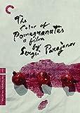 The Color of Pomegranates (English Subtitled)