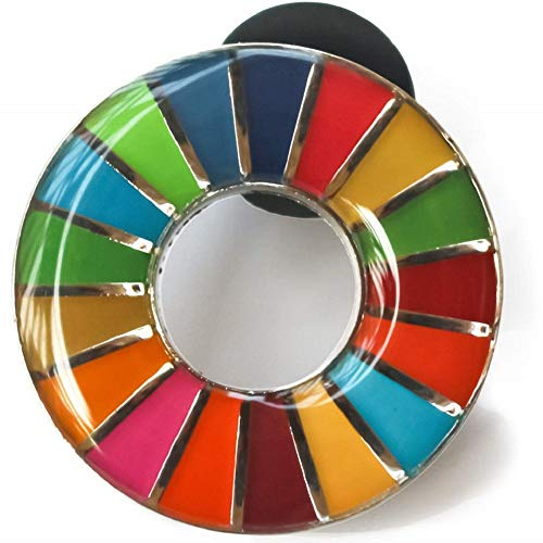 SDGs ピンバッジ 国連 バッチ バッジ エスディージーズ 説明書 (丸み仕上げ(1個))