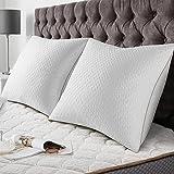 BedStory [Bambou Fibre] Oreillers Bambou 60x60 Lot de 2 avec Taies Antiacariens Amovibles, Oreillers Anti-Allergies avec Garnissage 10% 7D et 90% 3D Fibre Polyester, Oreillers Qualité Hotel