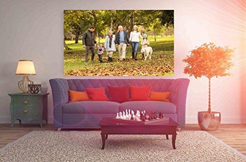 Cuadro PVC Personalizado Collage 4 | Varias Medidas 150x60cm | Facil colocacion | Decoracion Habitación | Motivos paisajisticos | Naturaleza | Urbes | Multicolor | Diseño Elegante |