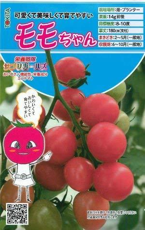 【モモちゃん】ミニトマトの種(8粒) (小袋(8粒))