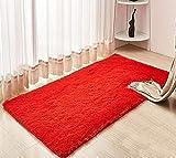 CNFQ Shaggy alfombras de Pelo Largo alfombras Salon alfombras de habitacion moquetas Sala de Estar (Rojo, 120 x 80 cm)