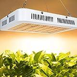 HYDL Lámpara de Cultivo LED 500W, Full Spectrum Plant Grow Lights Lámparas de Crecimiento, luz Artificial para Plantas de germinación, plántulas, floración y fructificación