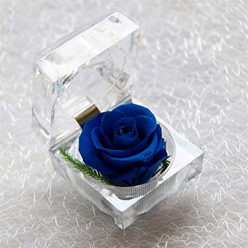 WZ Flor Real Preservada Rosa Eterna con Caja Anillo Cristal Acrílico, Lo Mejor para La Esposa Novia Día Madre Cumpleaños San Valentín Boda (Color : Royal Blue)