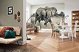 'Komar Papier peint photo non-tissé Motif Elephant, 368x 248cm, 4pièces