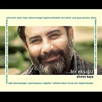 Bir Eksiğiz: Ahmet Kaya