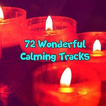 72 Wonderful Calming Tracks