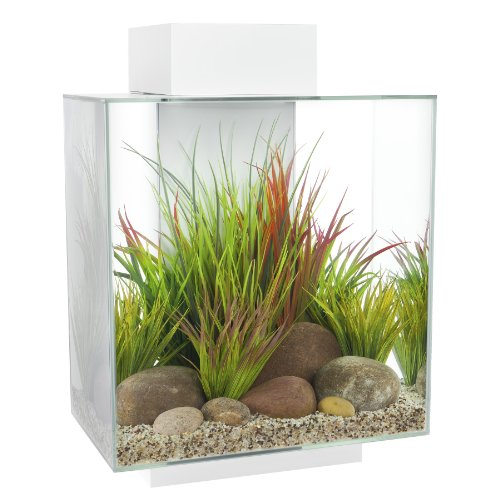 Fluval EDGE Aquarium Kit, Aquarium with LED...