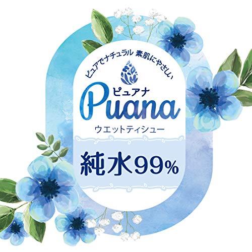 大王製紙 エリエール ピュアナ Puana 純水99% ウェットティシュー 詰替用 186枚 3コ入り [8513]