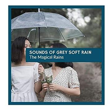 Sounds of Grey Soft Rain - The Magical Rains
