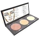 City Color Cosmetics Contour Effects Palette 2 Item No. F-0005A True Matte + Free ZipBag