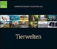 GEO Edition: Tierwelten 2022 - Wand-Kalender - 70x60: Posterkalender