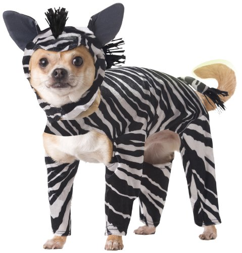Animal Planet PET20100 Zebra Dog Costume, Medium