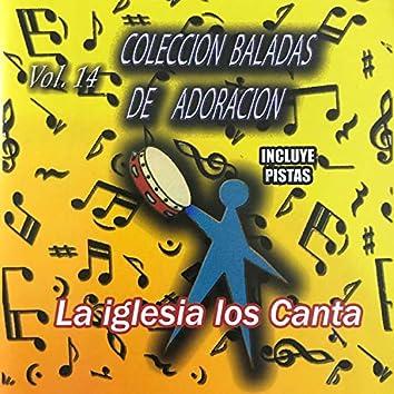 Colección Baladas De Adoración, Vol. 14