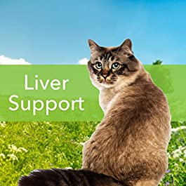 Pet Wellbeing – Milk Thistle for Cats – Natural Support for Feline Liver Health – 2oz (59ml)
