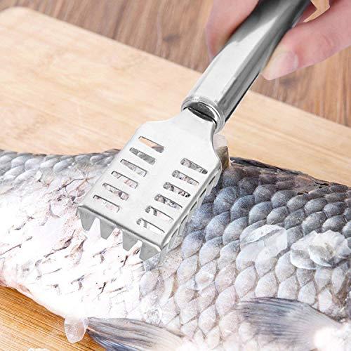 Aixin Fischmesser Scraper Fischschuppenentferner Entkalker Fischreiniger Edelstahl Küchenschäler Küchenhelfer Gadgets Zubehör und effizient Fischschuppen entfernen
