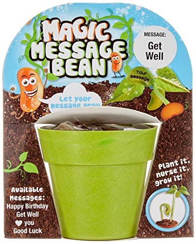 MAGIC BEAN-HAPPY BIRTHDAY-COMPLETE WITH ALL MATERIALS